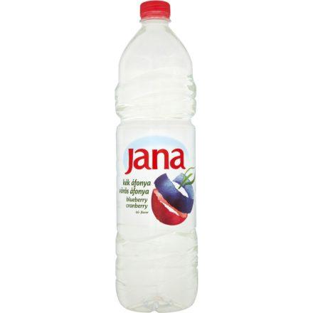 Jana Blueberry-Cranberry 1,5l PET