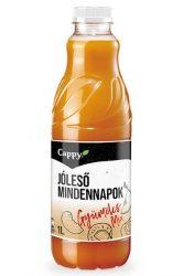 Cappy Fruit Mix 1l DOB