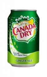 Canada Dry 0,33l DOB